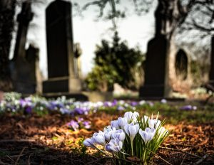 A graveyard with flowers, wrong death